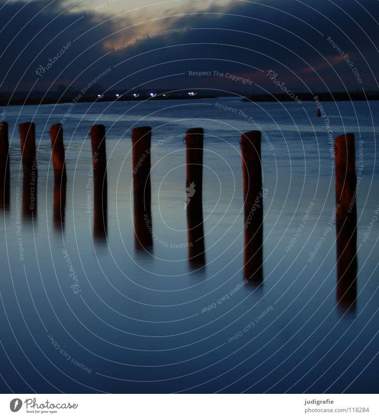 Silvestermorgen Natur Wasser ruhig See Nebel Hafen Reihe Pfosten Zingst aufgereiht Fischland Vorpommersche Boddenlandschaft