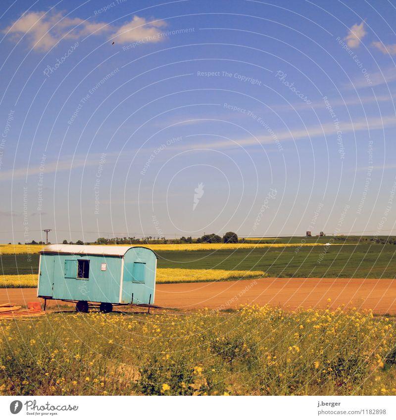 blau machen Baustelle Natur Landschaft Pflanze Himmel Frühling Wetter Schönes Wetter Feld braun gelb grün Baubude Bauwagen Rapsfeld Wolkenloser Himmel Farbfoto