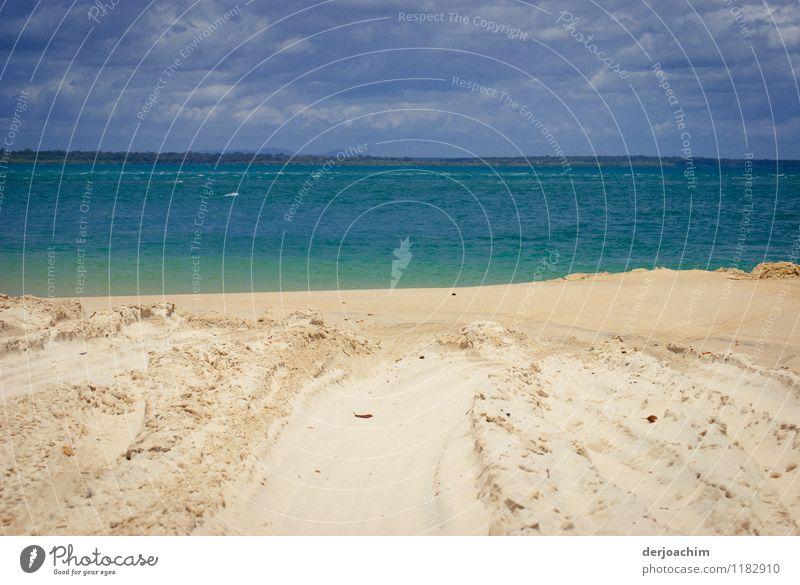 Sand, Meer und blauer Himmel und dunkle Wolken. Freude ruhig Freizeit & Hobby Ausflug Strand Insel Umwelt Wasser Sommer Schönes Wetter Pazifik Fraser Island