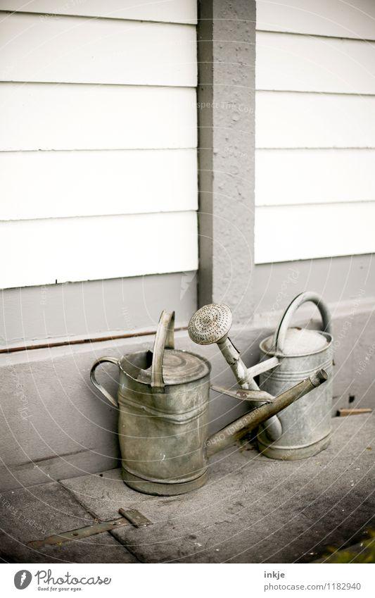 alte Liebe rostet nicht Senior grau Garten Stimmung Lifestyle Metall Zusammensein Häusliches Leben Idylle einfach Gartenarbeit Gießkanne verbeult