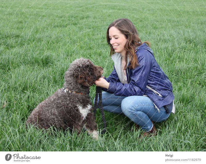 junge Frau mit langen brünetten Haaren hockt lächelnd auf einer Wiese und schaut ihren Hund an Mensch feminin Junge Frau Jugendliche Erwachsene 1 18-30 Jahre