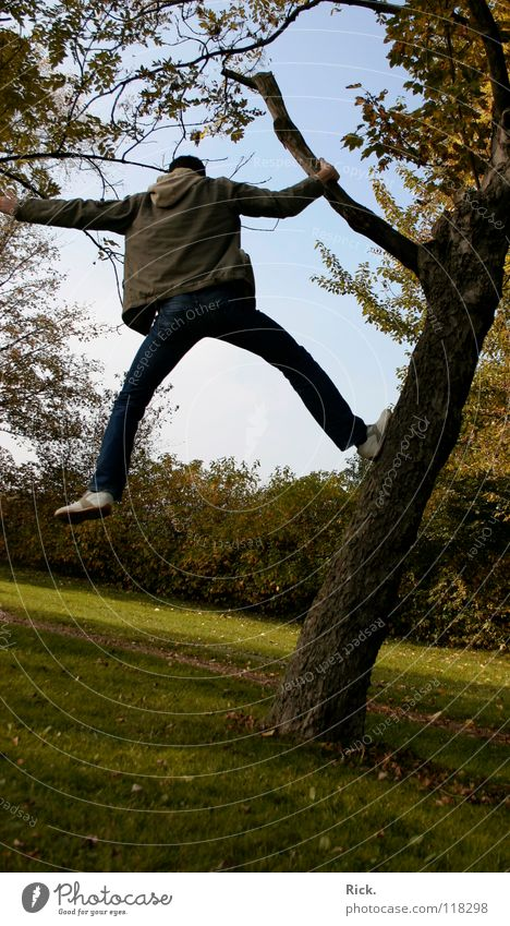.Kletterbaum Nr. 3 Baum springen Herbst gelb Kerl Wiese Halt Situation Aktion Blatt Baumrinde Stimmung Schuhe Holzmehl Himmel grün verrückt Stativ Leben Mann