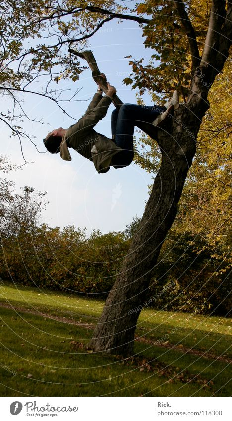 .Kletterbaum Nr. 4 Baum springen Herbst gelb Kerl Wiese Halt Situation Aktion Blatt Baumrinde Stimmung Schuhe Holzmehl Himmel grün verrückt Stativ Leben Mann