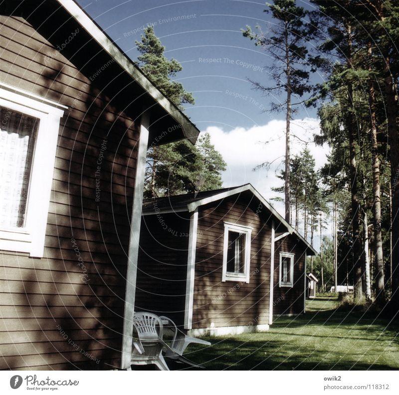 Mittlere Preisklasse Tourismus Ferne Sommer Häusliches Leben Dienstleistungsgewerbe Umwelt Natur Nadelbaum Wiese Wald Hütte Fassade Fenster einfach Idylle