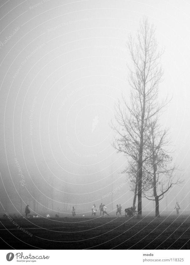 Nebel II Mensch Baum Winter Wolken Wiese Herbst laufen Fußball hoch Trauer Rasen München Bayern Englischer Garten