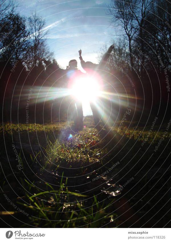 . Sonnenstrahlen Freude Glück Zufriedenheit Freiheit Tanzen Freundschaft Jugendliche Arme Himmel Baum Gras Wiese frei Fröhlichkeit blau grün Halm Ast Reflektion