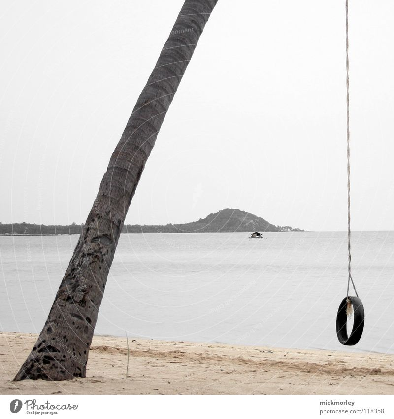 Palmenschaukel Baum Meer Strand Ferien & Urlaub & Reisen Haus Einsamkeit Spielen Seil Insel Asien Schnur Thailand Gummi