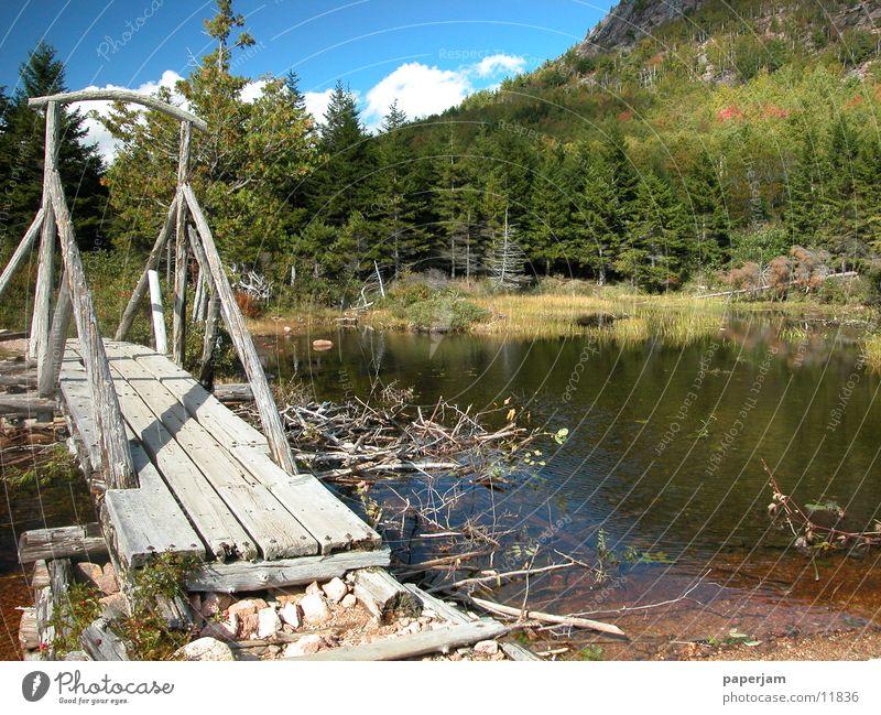 Jordan Pond Natur See Brücke USA