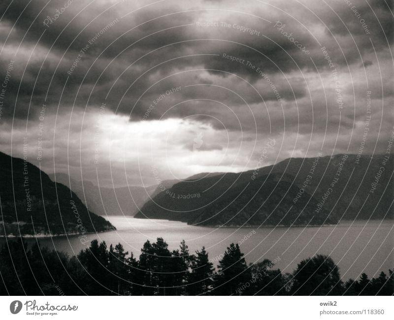 Fjordland Ferne Berge u. Gebirge Umwelt Natur Landschaft Luft Wasser Himmel Gewitterwolken Horizont Klima Schönes Wetter Baum Wald Felsen atmen bedrohlich