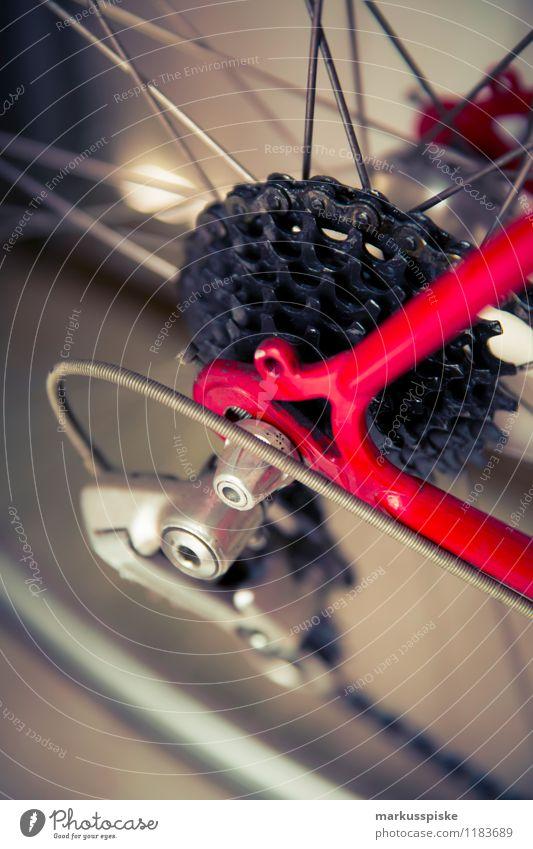 urbane mobilität - retro hipster rennrad Stadt Sommer Leben Stil Sport Lifestyle Freizeit & Hobby Design elegant ästhetisch genießen Ausflug Fahrradfahren