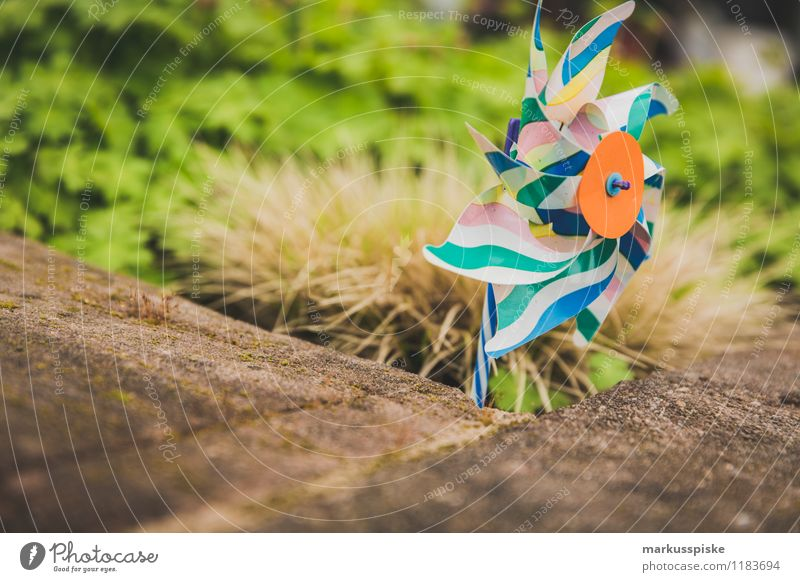 windrad Kind Mädchen Junge Spielen Garten Wohnung Kindheit Bildung Spielzeug Kleinkind Statue Kindergarten drehen blasen Kindererziehung Windrad