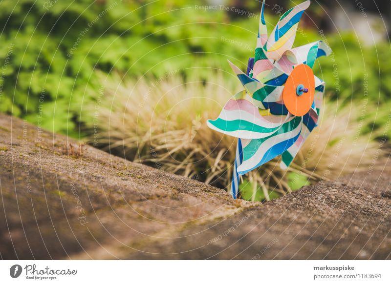 windrad Spielen Garten Bildung Kindergarten Spielzeug Windrad mehrfarbig Statue drehen Drehung blasen Kindheit Farbfoto Außenaufnahme Menschenleer