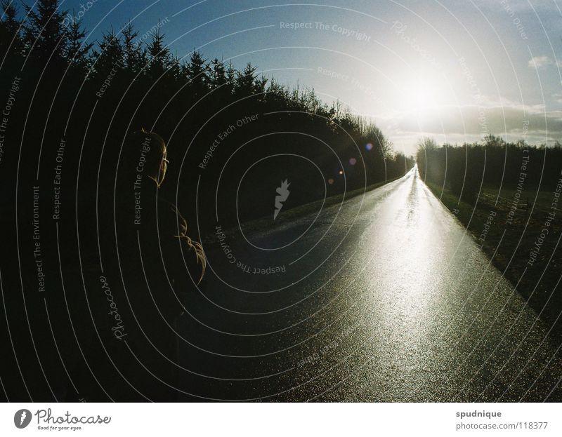 in die zukunft sehen gerade Gegenlicht Reflexion & Spiegelung Licht Fahrbahn Verkehrswege Frieden Straße Wege & Pfade Linie Sonne leere Straße schnurgeradeaus