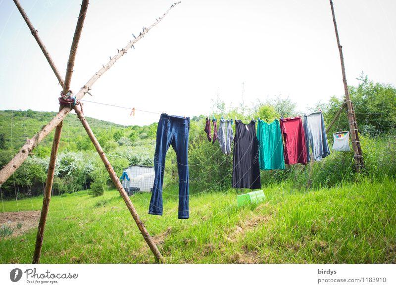 Die Wäsche trocknet an der Sonne, die... Lifestyle Natur Landschaft Himmel Frühling Sommer Schönes Wetter Sträucher Wiese Wald Hügel Jeanshose Kleid Strümpfe