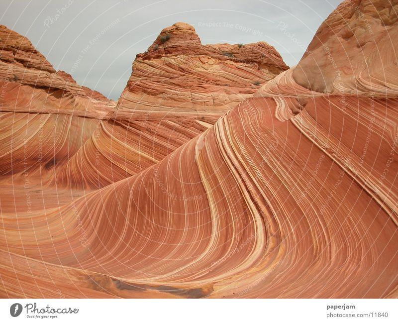 The Wave Erosion Felsen Stein Landschaft Natur Sandstein ästhetisch schön beeindruckend Attraktion Sehenswürdigkeit außergewöhnlich bizarr Wellenform wellig