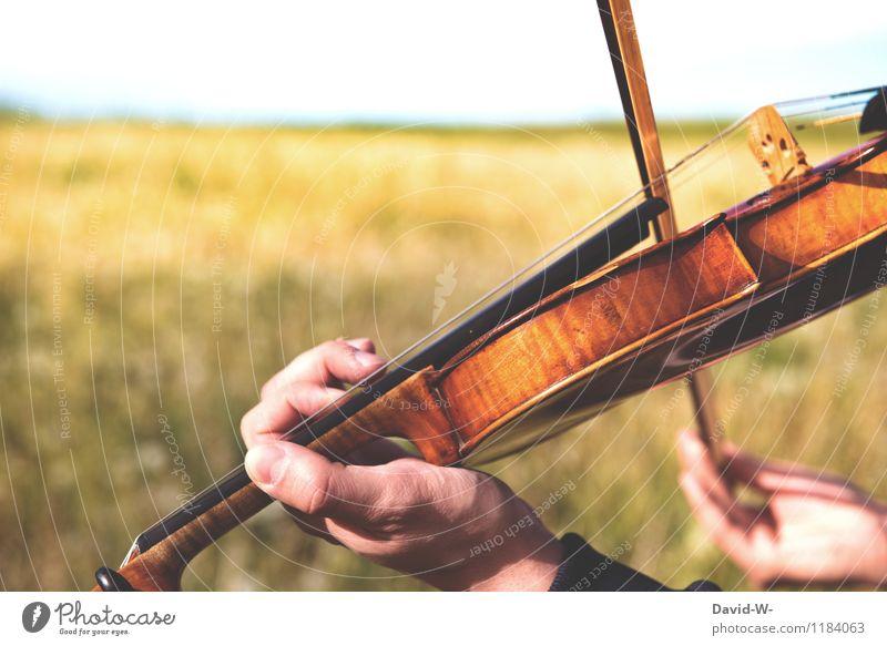 Naturtöne Erfolg Mensch feminin Junger Mann Jugendliche Erwachsene Leben Hand Kunst Künstler Kultur Musik Musik hören Konzert Open Air Musiker Geige Landschaft