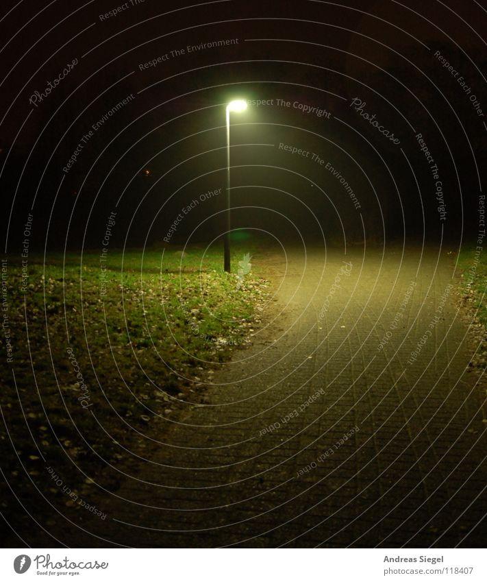 Laterne, einsam grün Blatt schwarz dunkel kalt Wege & Pfade Park Beleuchtung Rasen Bürgersteig Verkehrswege mystisch Lichtfleck Wildau