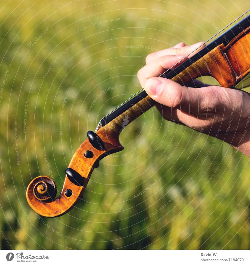 Naturtöne open air Mensch Jugendliche Mann Sommer Erholung Junger Mann ruhig Erwachsene Leben Gefühle Spielen maskulin Freizeit & Hobby elegant Musik Finger