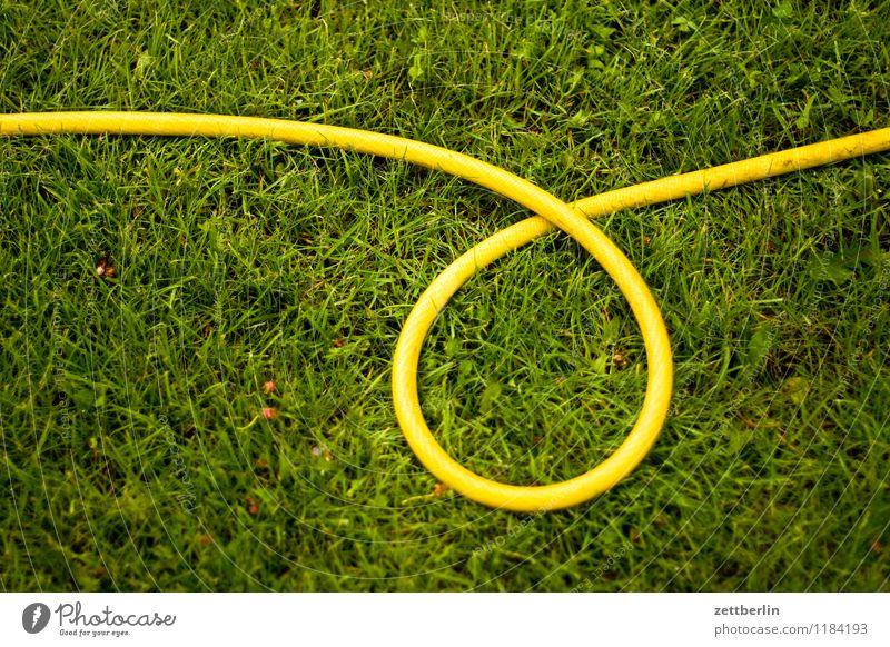 Schlauch Pflanze Wasser gelb Frühling Wiese Gras Garten liegen Regen Textfreiraum Kreis rund Rasen Sportrasen Schrebergarten Kurve