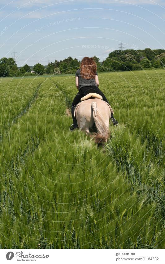Ab durch die Hecke Haare & Frisuren Reitsport Reiten feminin Rücken 1 Mensch Natur Nutzpflanze Feld rothaarig Pferd laufen rennen frei Zusammensein