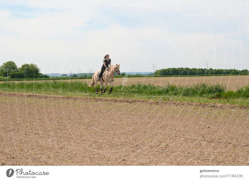 hopp hopp galopp Mensch Jugendliche Junge Frau Tier Ferne Bewegung Sport braun Zusammensein Feld Kraft frei Schönes Wetter Unendlichkeit Pferd sportlich