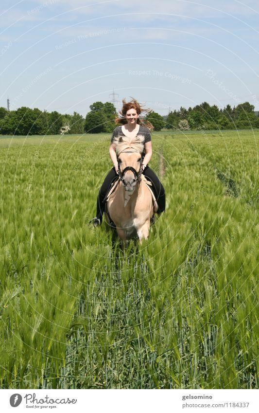 hopp hopp galopp feminin Junge Frau Jugendliche Haare & Frisuren 18-30 Jahre Erwachsene Natur Wind Nutzpflanze Feld rothaarig Pferd Fell Tier Bewegung Lächeln