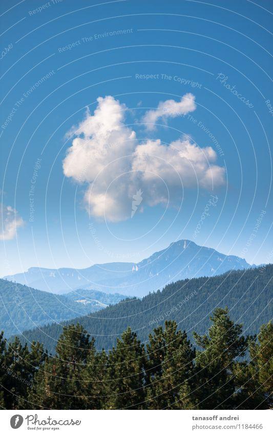 Wolke im blauen Himmel über den Bergen Natur Ferien & Urlaub & Reisen grün Sommer Baum Erholung Landschaft Wolken Wald Berge u. Gebirge Umwelt Freiheit Ausflug