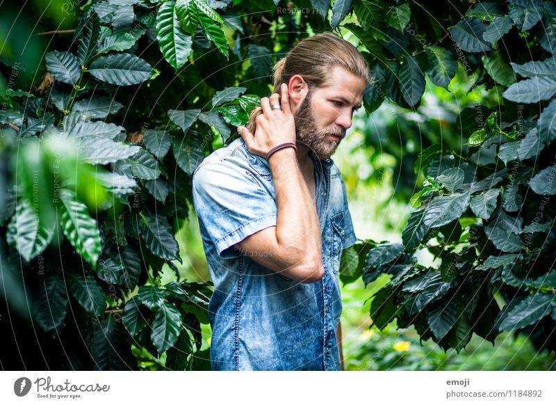 jungle Mensch maskulin Junger Mann Jugendliche Erwachsene 1 18-30 Jahre Umwelt Natur Sommer langhaarig Bart schön natürlich grün Farbfoto Außenaufnahme Tag