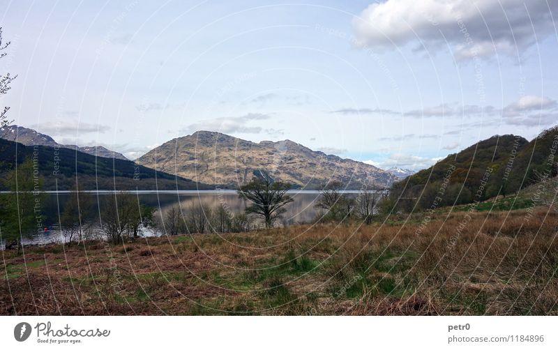 Loch Lomond Landschaft Wasser Himmel Wolken Frühling Hügel Berge u. Gebirge Highlands Gipfel Seeufer Heide Ardleish Schottland Europa Menschenleer Gelassenheit
