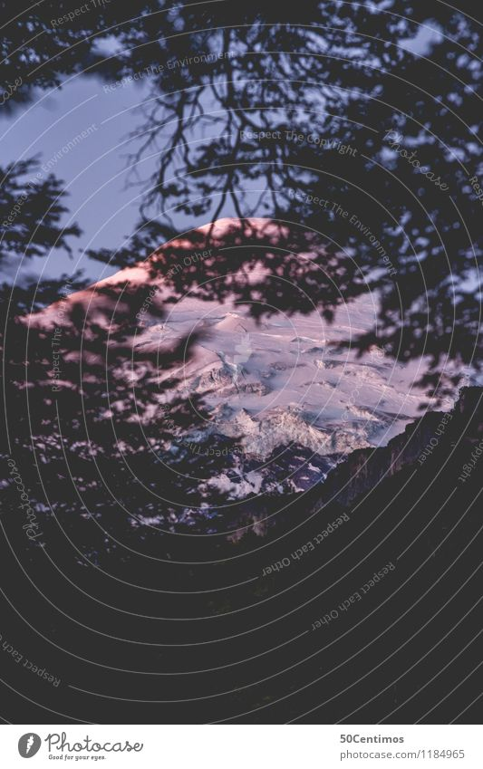 Lanin in Argentina Himmel Ferien & Urlaub & Reisen Landschaft Baum ruhig Winter Ferne Wald Berge u. Gebirge kalt Schnee Zeit Tourismus Freiheit Ausflug wandern