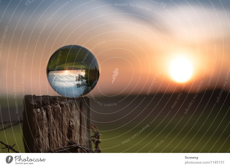 Welten #1 Natur Landschaft Pflanze Himmel Sonne Sonnenaufgang Sonnenuntergang Frühling Sommer Schönes Wetter Wiese Feld Glaskugel Kristallkugel Holz leuchten