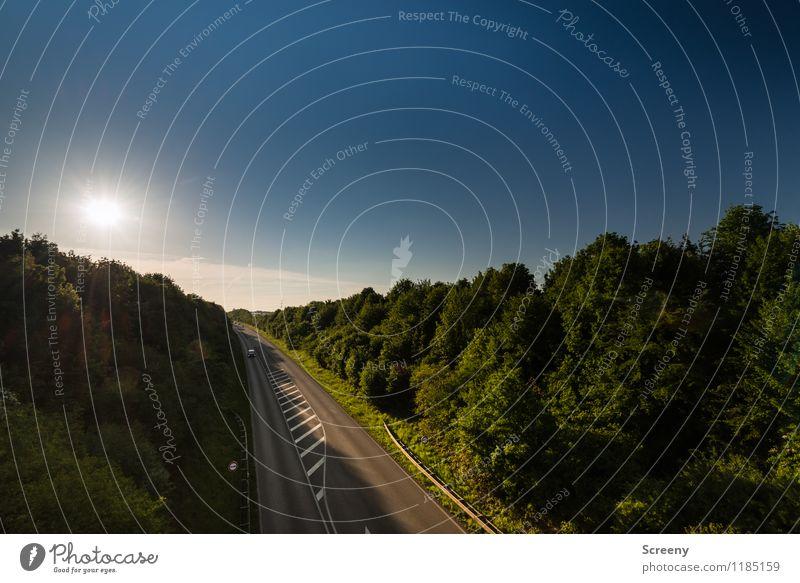 Zur Sonne, da lang... Umwelt Natur Landschaft Himmel Frühling Sommer Schönes Wetter Pflanze Baum Sträucher Verkehr Verkehrswege Personenverkehr Autofahren