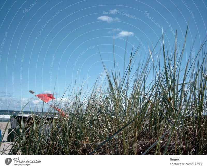 steife briese von vorn! Meer Strand Ferien & Urlaub & Reisen Wasserfahrzeug Ostsee