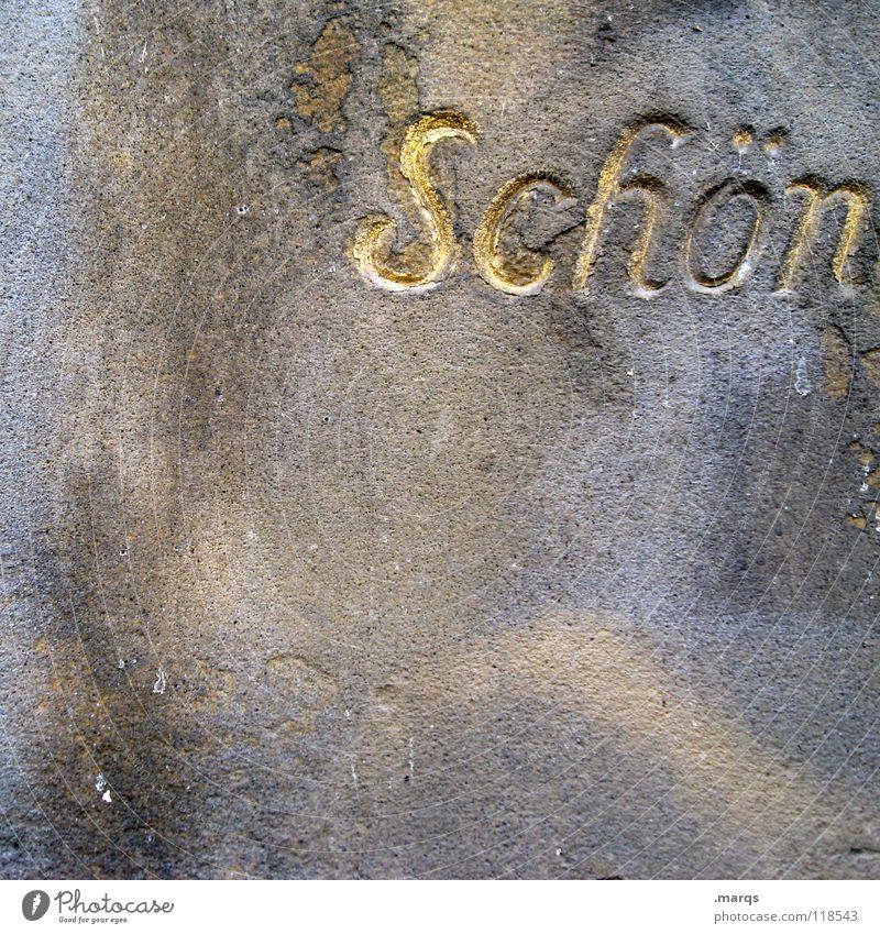färberei Wand Mauer dreckig Beton Buchstaben Wort Serife schön Typographie verfallen Makroaufnahme Nahaufnahme Schriftzeichen Schritzug kursiv gold alt