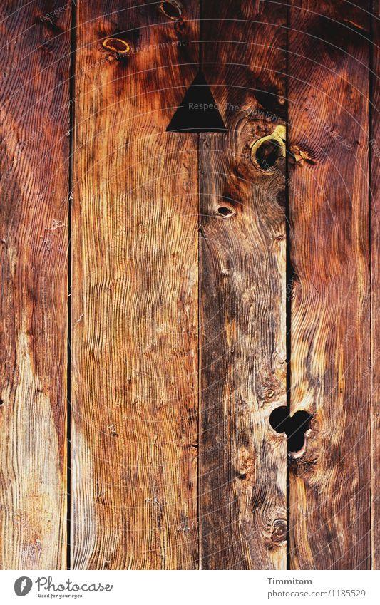 nie wieder | diese Toilette! alt dunkel schwarz Holz braun Linie Häusliches Leben Tür ästhetisch einfach Bauernhof Holzbrett Dreieck Erleichterung Astloch