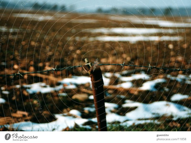 Zaun Stacheldraht Winter Herbst Landschaft Rost alt