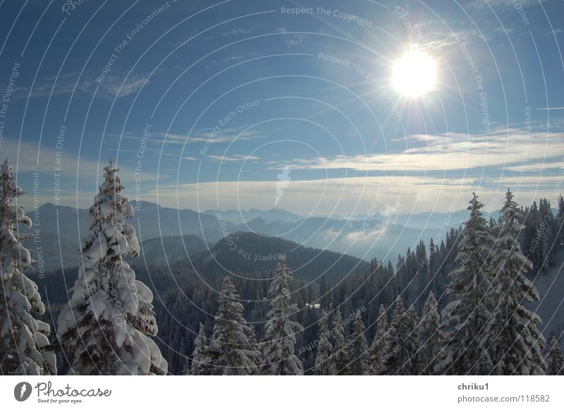 Wintersonnentag Himmel blau Baum Sonne kalt Schnee Berge u. Gebirge Freizeit & Hobby Alpen Aussicht Winterstimmung Skitour