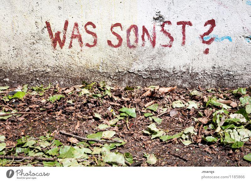 Herbst alt Blatt Wand Mauer Lifestyle Stimmung Erde Schriftzeichen Kommunizieren kaputt Fragen was Fragezeichen