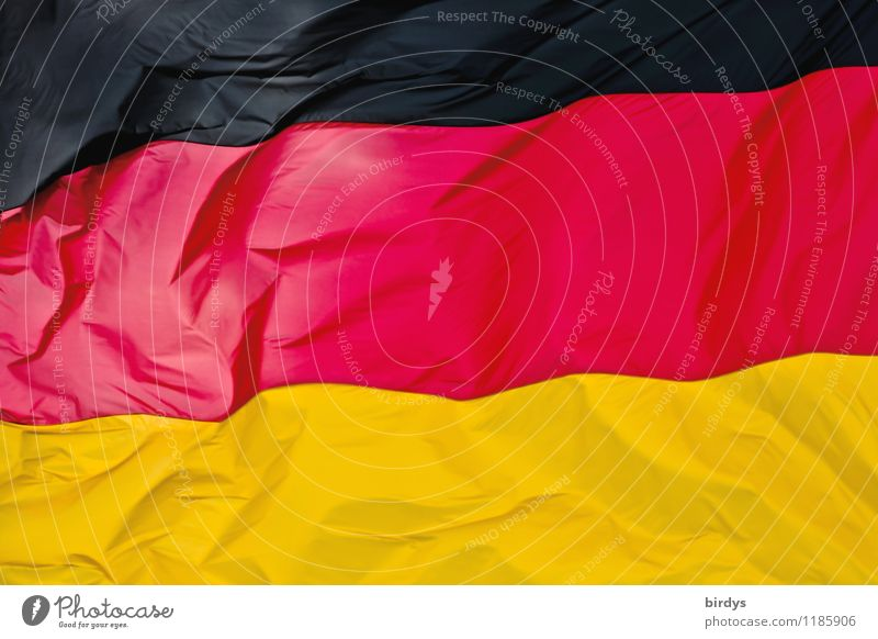 Kontrastreich Deutschland Zeichen Streifen Fahne ästhetisch elegant positiv gold rot schwarz Farbe Identität Politik & Staat Deutsche Flagge formatfüllend