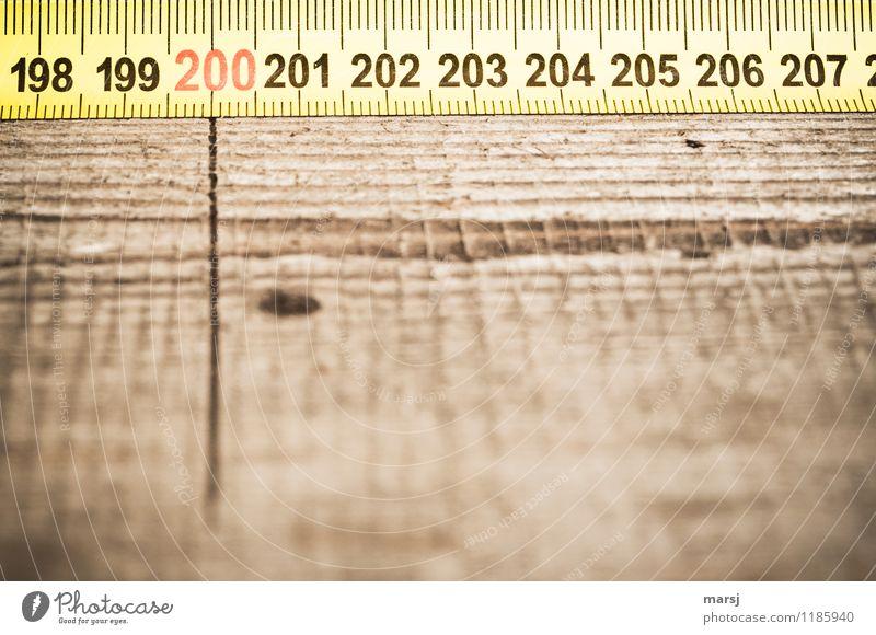plus zweihundert Arbeit & Erwerbstätigkeit Beruf Arbeitsplatz Baustelle Maßband Holz Ziffern & Zahlen Linie braun gelb messen Präzision Genauigkeit 200 Maserung