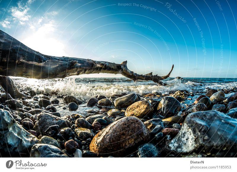 Plätschern Himmel blau Wasser weiß Sonne Landschaft Wolken schwarz Küste Stein braun Horizont Wellen Schönes Wetter weich Baumstamm