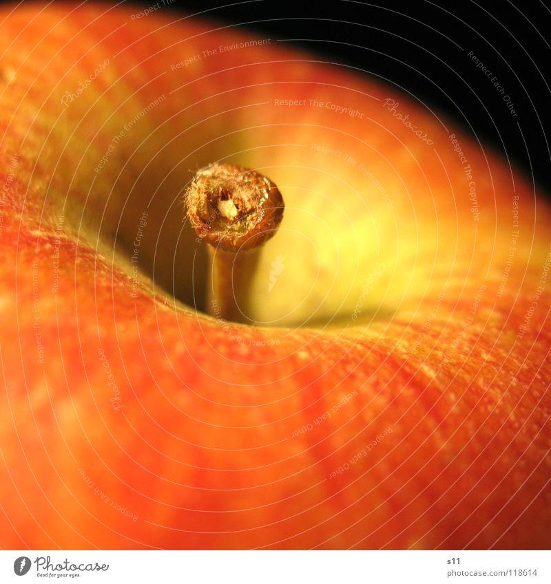 Knackig.Saftig Frucht Apfel Gesundheit Natur rund saftig süß Wut gelb grün rot knackig Vitamin Glätte Stengel Nahaufnahme Makroaufnahme