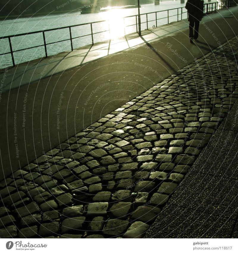 walk the Main Frankfurt am Main Promenade Bürgersteig Sonnenuntergang Licht Abendsonne Abenddämmerung Winter gehen Luft ruhig Einsamkeit Abschied grau
