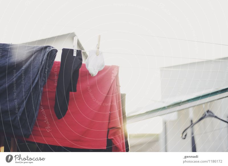 Rein Bekleidung T-Shirt Wäsche Wäsche waschen Wäscheleine Sauberkeit rot Reinheit hell Haushalt Farbfoto Menschenleer Tag Schwache Tiefenschärfe