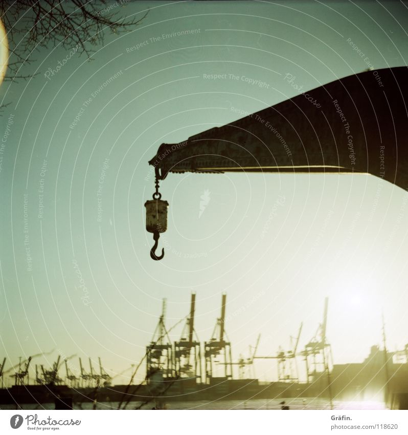 An den Haken nehmen Kran blenden Lomografie Rollfilm Elbstrand Hafen Elbufer Baum Perspektive Industrie Hamburg Sonne Lichtfleck 120er Elbe Spaziergang Kette