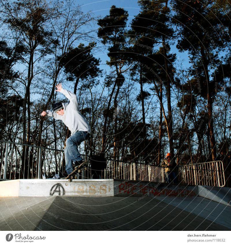 nosegrind Skateboarding Pullover Sportpark Gegenlicht Grinden Zufriedenheit Baum Park kaputt Spielen funbox Schatten einzeln