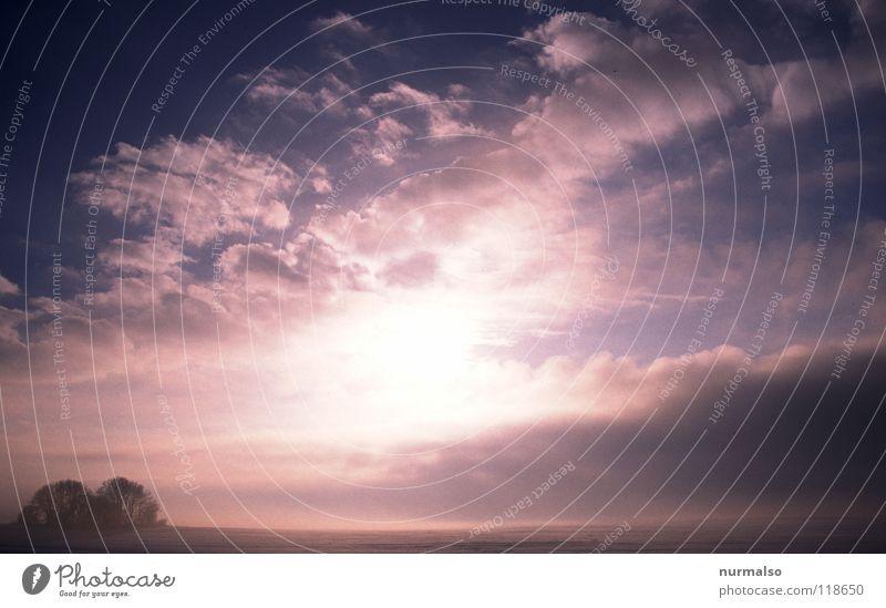 Kalter Nebel I Sonne Winter Wolken Ferne kalt Schnee Gefühle Wege & Pfade Eis hell Stimmung Feld Wind Horizont Amerika frieren