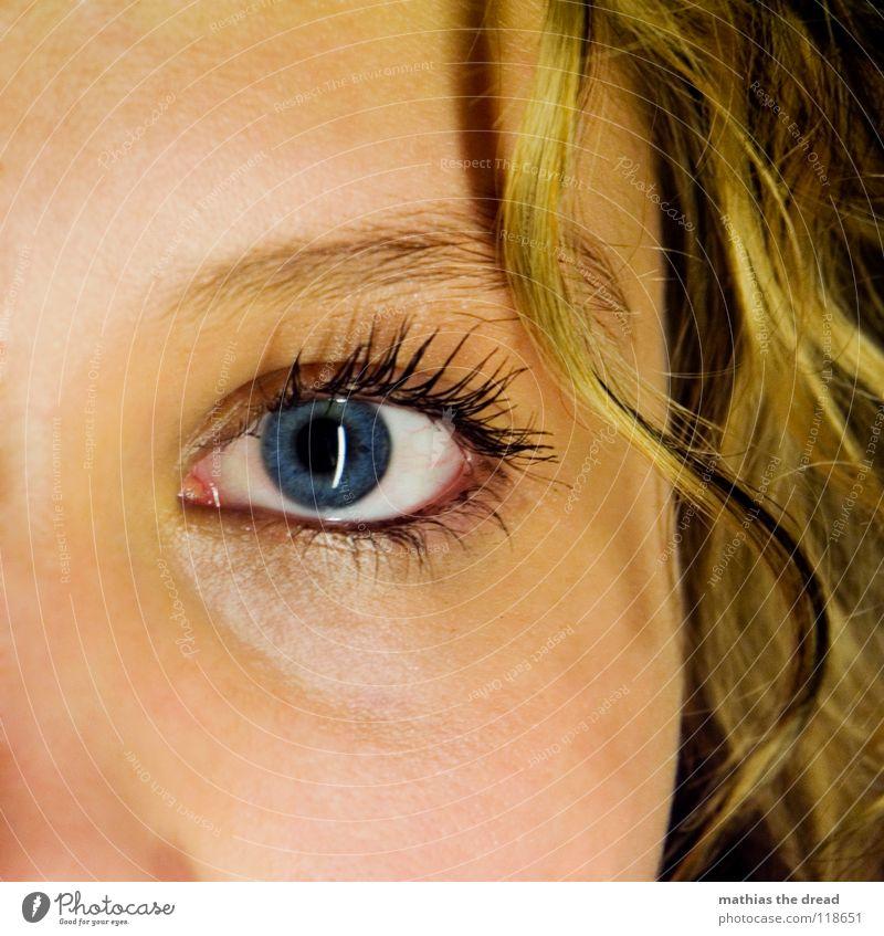 Meine Kleine Schwester II Wimpern Frau feminin geschminkt Wimperntusche wellig strahlend groß Freundlichkeit neutral Vertrauen schön Auge Gesicht Detailaufnahme