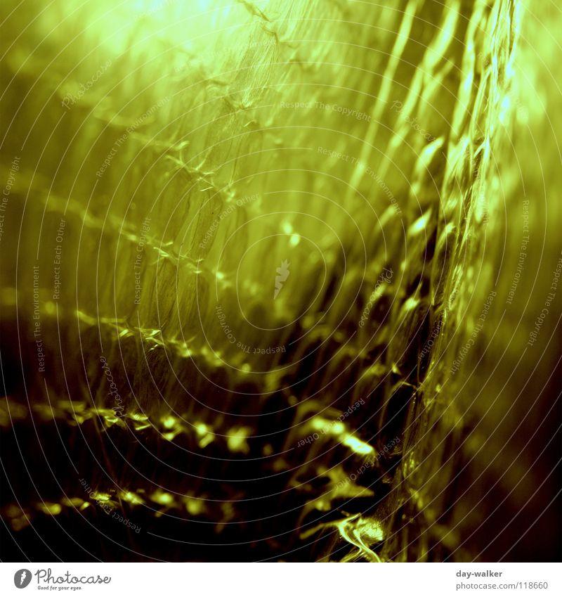 Luftkammer Beutel Noppe Schutzausrüstung Raum Polster Luftpolsterfolie Makroaufnahme Licht grün dunkel Sicherheit Nahaufnahme Verkehr hohlraum luftkammern