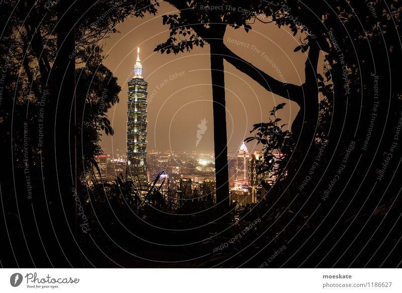 Taipei 101 Baum Taipeh Taiwan Asien Stadt Hauptstadt Stadtzentrum Stadtrand Skyline Haus Hochhaus Bankgebäude Park Bauwerk Gebäude Architektur dunkel Taipeh 101